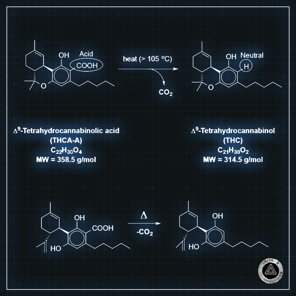 Why is the total THC or CBD content lower than the sum of THCA + THC or CBDA + CBD, respectively?