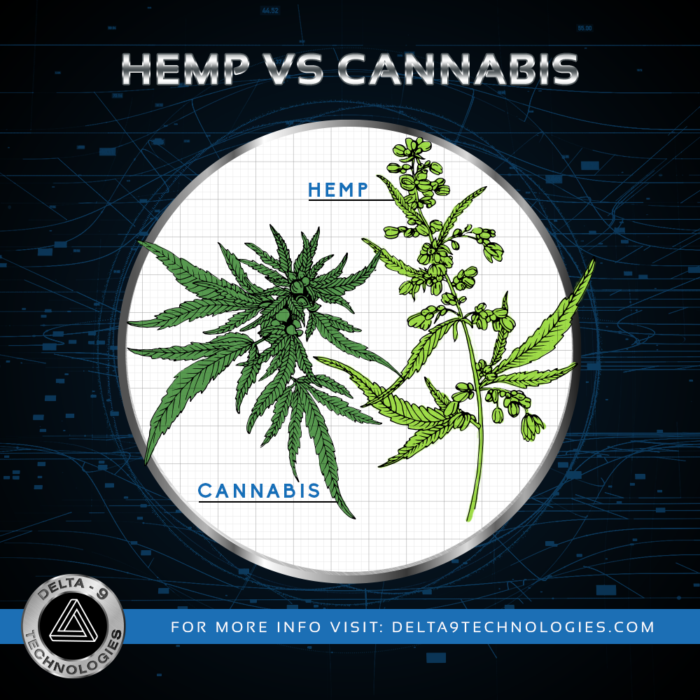Hemp_vs_Cannabis